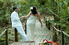 Munnar Honeymoon Tour Packages from Munnar for 3 Days